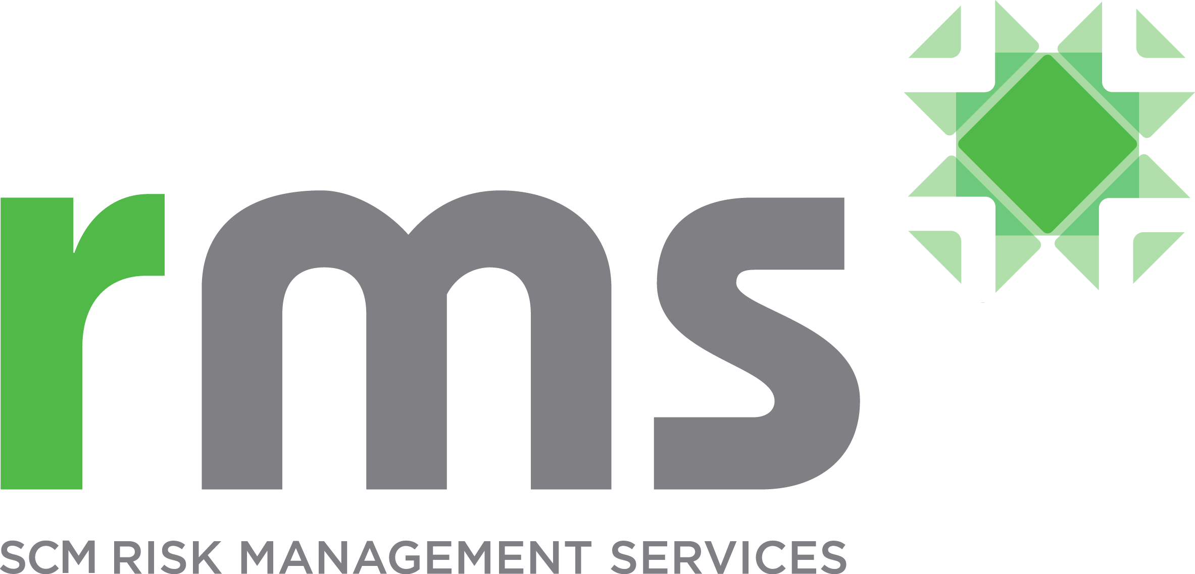 RMS-Risk Management Services