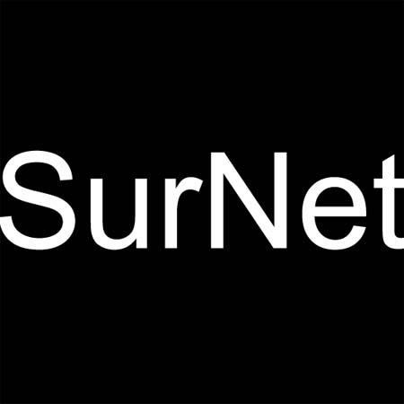 Surnet Insurance Group
